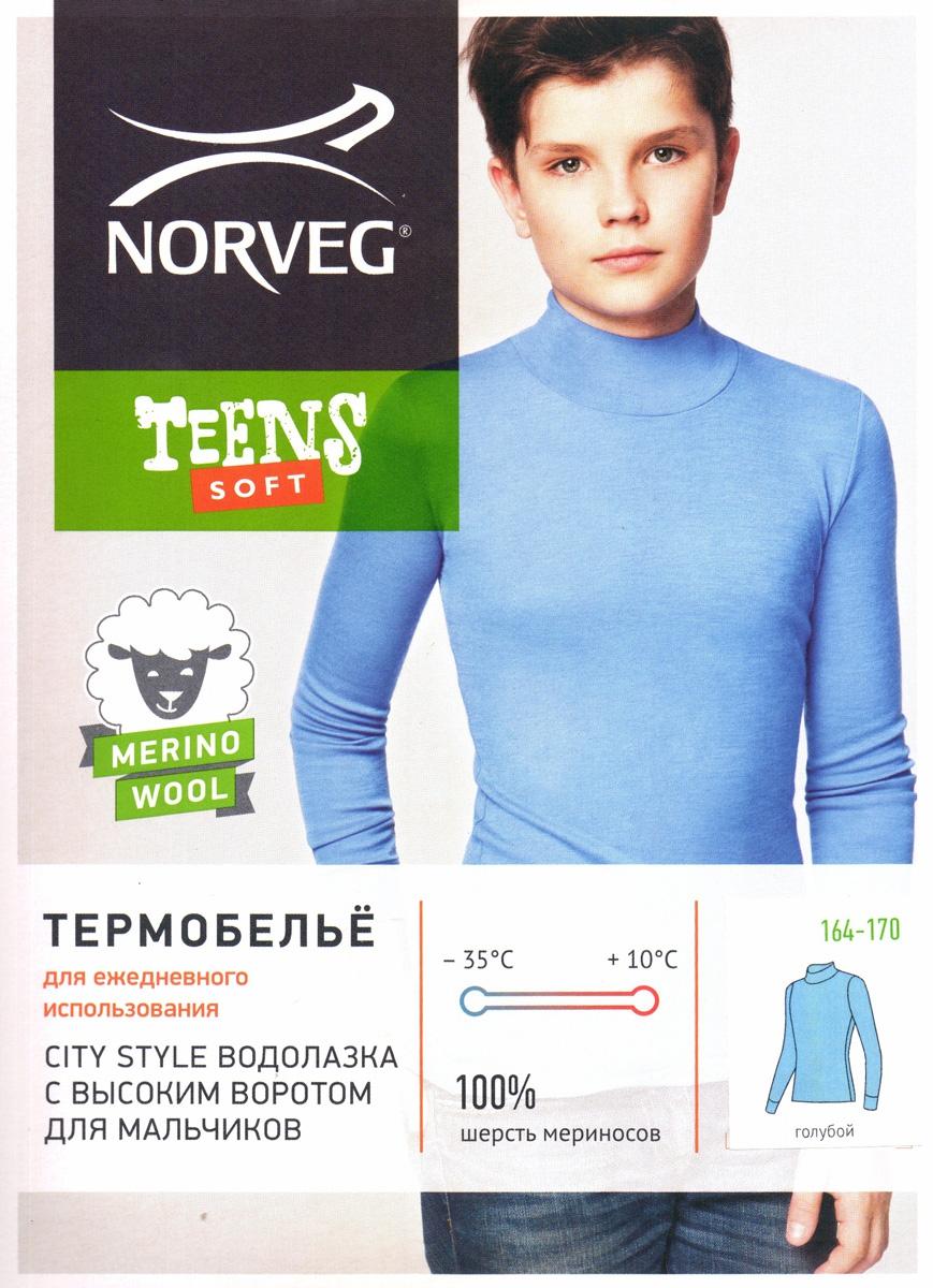 Водолазка для мальчиков Norveg Soft Teens City Style